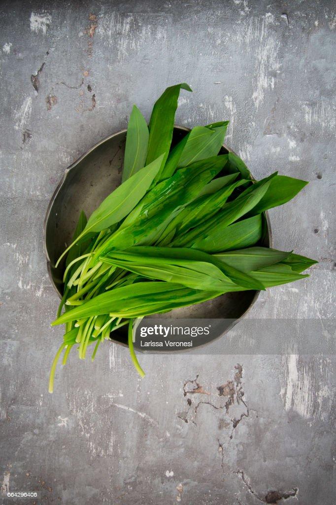 Organic Wild garlic, Allium ursinum, on plate : Stock-Foto