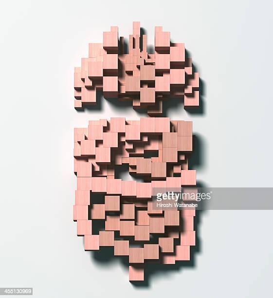 Organs made of wooden blocks