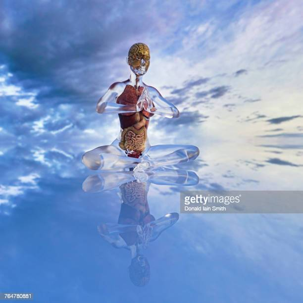 Organs of transparent woman meditating in cloudy sky