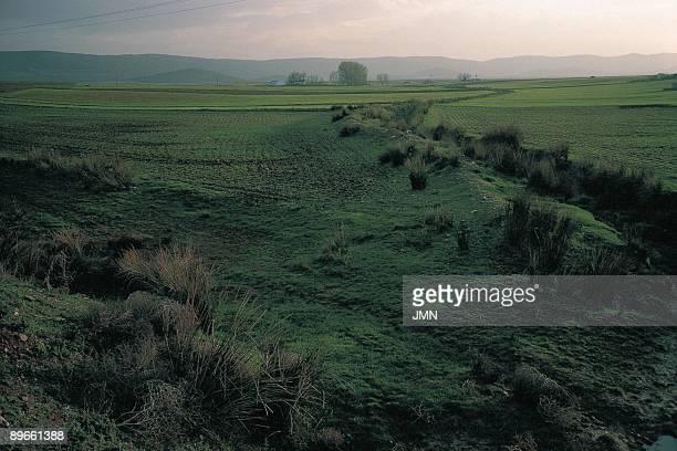 Orgaz Toledo Plain landscape in the surroundings of the town