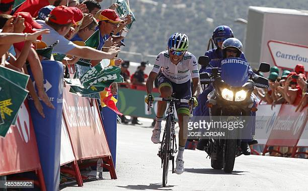 Orica GreenEdge's Colombian cyclist Esteban Chaves arrives to cross the finish line and win the sixth stage of the 2015 Vuelta Espana cycling tour a...