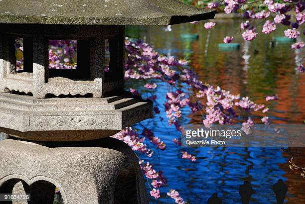 Oriental garden in spring time