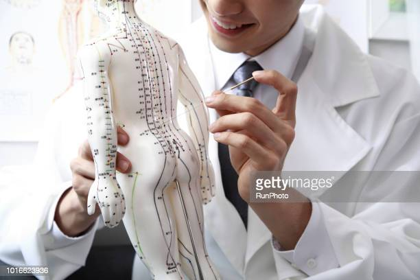 Oriental medical doctor applying needles on acupuncture model