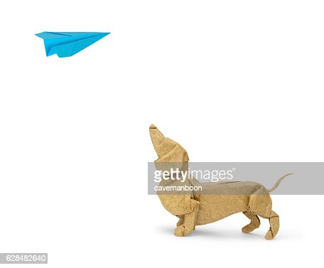 Origami Dachshund Looking Up At Paper Plane Stock Photo Getty Images