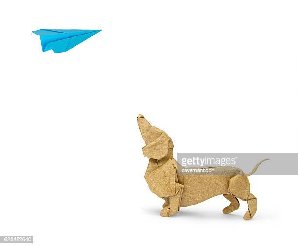 Origami dachshund looking up at paper plane