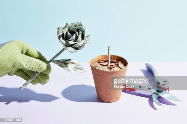 origami dollar flower being picked - chopped stock pictures, royalty-free photos & images