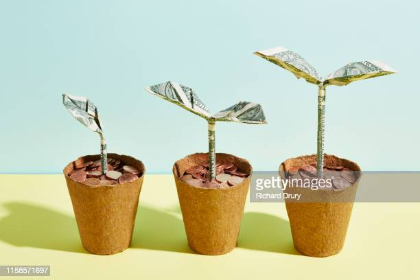 origami dollar seedlings growing in flower pots full of coins - small group of objects stock pictures, royalty-free photos & images