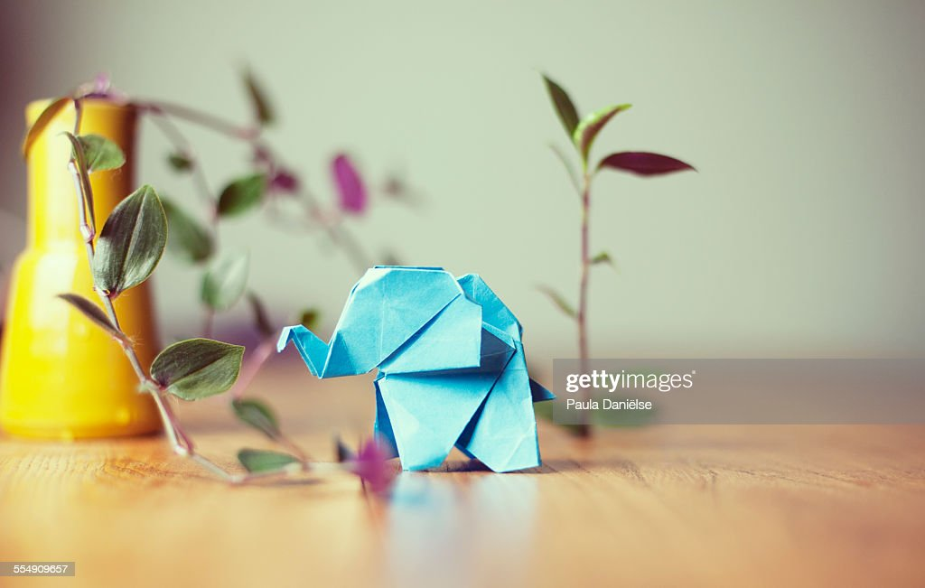 Origami elephant : Stock Photo