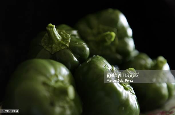 orihuela,spain - pimiento verde fotografías e imágenes de stock