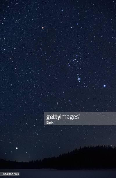 Orion constellation and Sirius rising above horizon