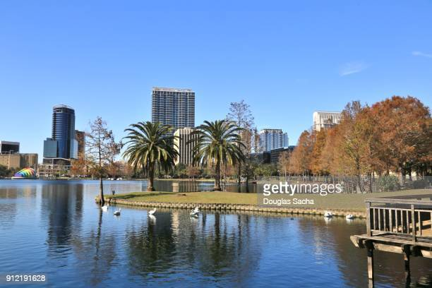orlando downtown city skyline from lake eola park - orlando florida stock photos and pictures