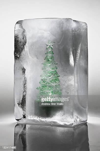Ornamental Christmas tree frozen in a block of ice