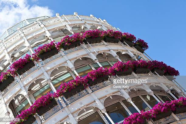 Ornate building exterior in Dublin decorated with purple coloured flowers
