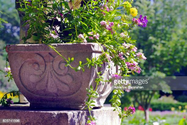 Ornate Planter With Wildflowers in a Formal Garden