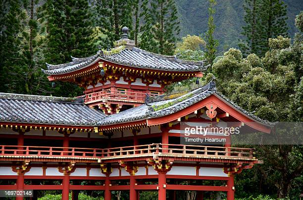 ornate temple with forest backdrop - timothy hearsum stock pictures, royalty-free photos & images