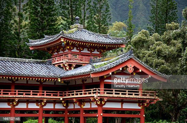 ornate temple with forest backdrop - timothy hearsum bildbanksfoton och bilder