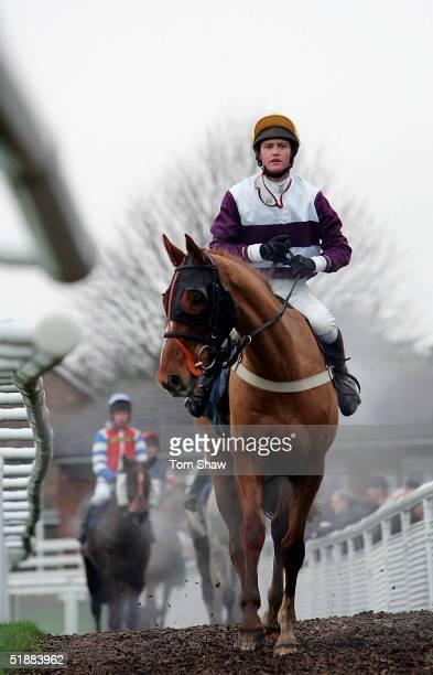 L'orphelin ridden by Joe Tizzard returns to the paddock after winning the Casino@Bluesqcom Novices Steeple Chase at Fontwell Park Racecourse on...