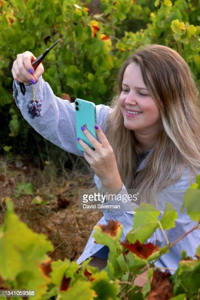 Ortal Becker, an Israeli wine entrepreneur who has developed her own line of women's wine-themed clothing, creates content for her social media to...