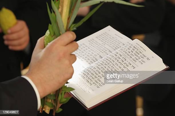 Orthodox Jews hold branches and fruit of etrog, a type citrus fruit, while blessing a sukkah, an outdoor hut, as part of the Sukkot holiday at the...