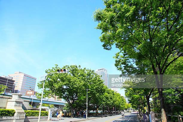 osaka prefecture, japan - アベニュー ストックフォトと画像