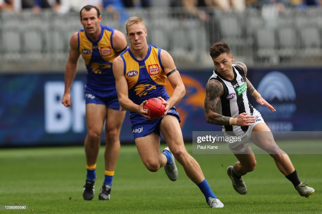 AFL Rd 8 - West Coast v Collingwood : News Photo