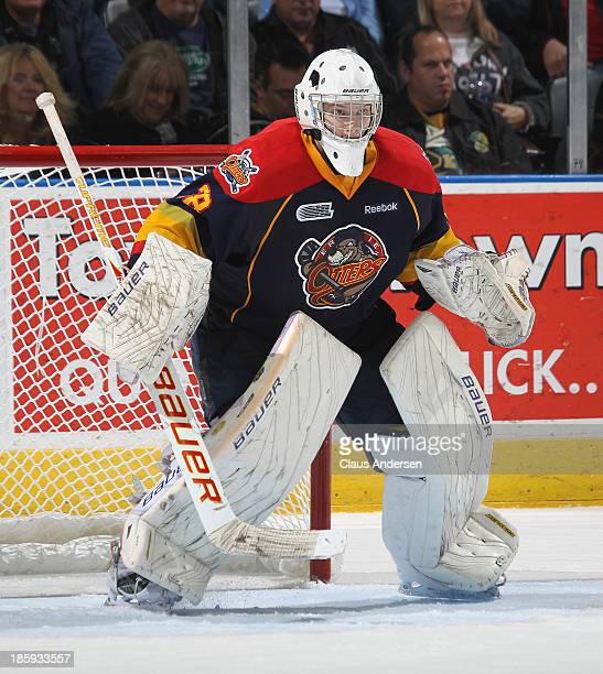 Oscar Dansk of the Erie Otters watches for a shot against the London Knights during an OHL game at the Budweiser Gardens on October 25 2013 in London...