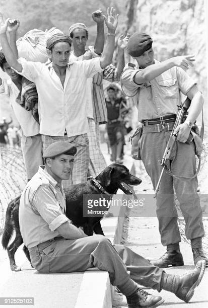 Oscar the four year old labrador adopted by Zulu Company of the Royal Marines seen here on patrol in the Radfan Mountains Aden Soldiers from 45...