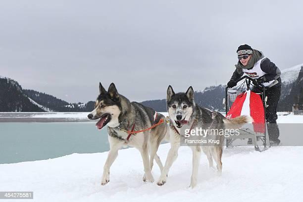 OscarLee Kirchberger attends the Sledge Dog Race Tirol Cross Mountain 2013 on December 07 2013 in Innsbruck Austria
