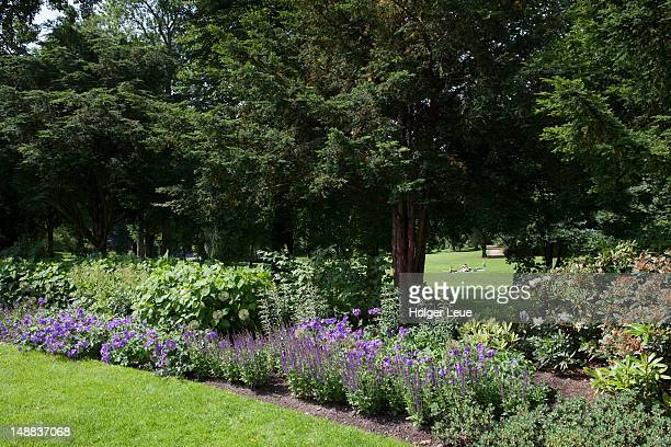 oslo royal palace gardens. - royal palace oslo stock pictures, royalty-free photos & images