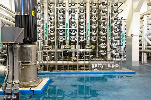 osmosi - pianta acquatica foto e immagini stock