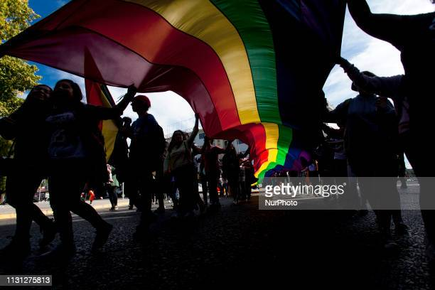 Osorno Chile 16 march 2019 Members of social organizations and communities of gays lesbians transsexuals and heterosexuals demonstrated to...