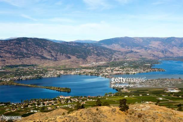 osoyoos lake vineyard - thompson okanagan region british columbia stock pictures, royalty-free photos & images