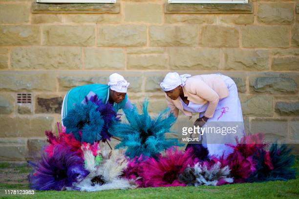 ostrich feather sellers organising dusters on the grass - ostrich feather stock pictures, royalty-free photos & images