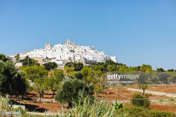 ostuni and olive groves - ostuni stock photos and pictures