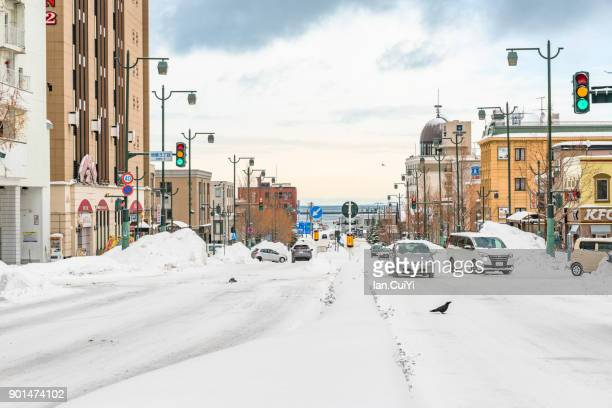 Otaru Harbour covered by deep snow, Japan