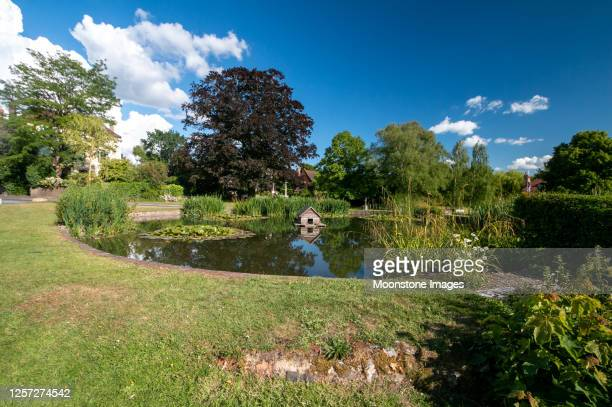 otford traffic circle duckhouse in kent, england - reed grass family stock pictures, royalty-free photos & images