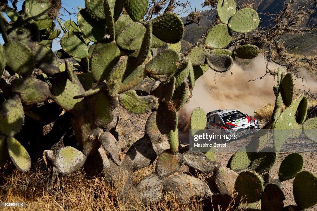FIA World Rally Championship Mexico - Day One : News Photo