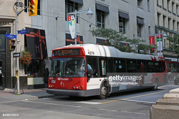 ottawa bus on bank street in canada's national capital region - ottawa stock pictures, royalty-free photos & images