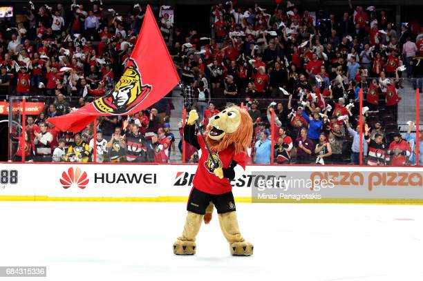 Ottawa Senators Mascot Spartacat celebrates defeating the Pittsburgh Penguins with a score of 5 to 1 in Game Three of the Eastern Conference Final...