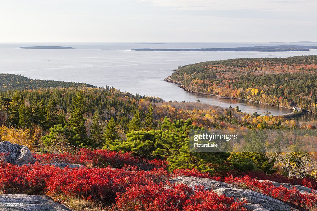 Otter Cove from Gorham Mountain in Autumn, Acadia National Park : Stock Photo