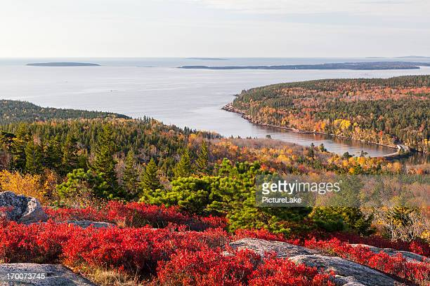 Otter Cove from Gorham Mountain in Autumn, Acadia National Park
