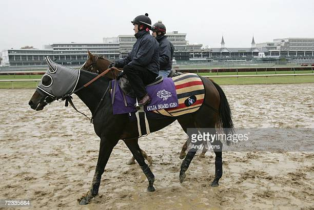 Ouija Board walks on the track at Churchill Down on November 1 2006 the site of Saturday's Breeders' Cup Louisville Kentucky