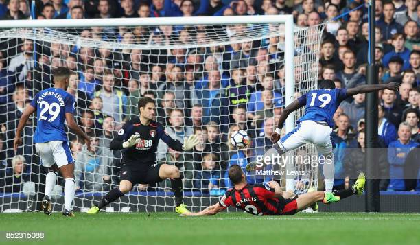 Oumar Niasse of Everton scores his side's first goal during the Premier League match between Everton and AFC Bournemouth at Goodison Park on...