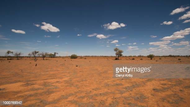 Our arid inland, landscape between Menindee & Broken Hill, NSW!!