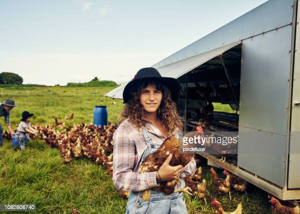 our farm is completely free-range - agricultural occupation stock pictures, royalty-free photos & images