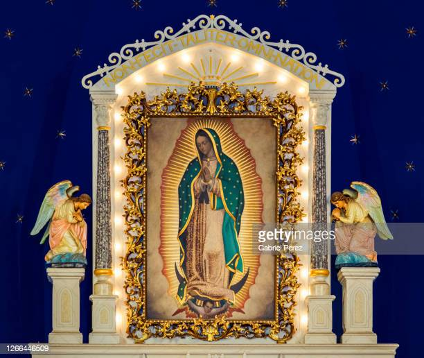 our lady of guadalupe - religious celebration stock pictures, royalty-free photos & images