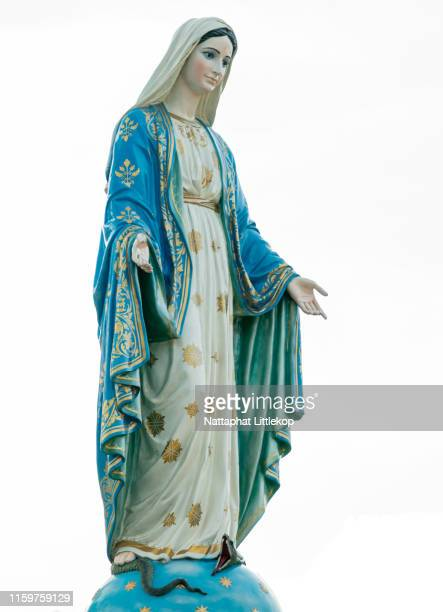 our lady, the blessed virgin mary on white background. - blessed mother mary stock pictures, royalty-free photos & images