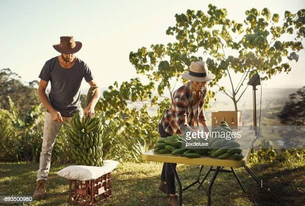 Ons levensonderhoud hangt volledig af van onze crops7410