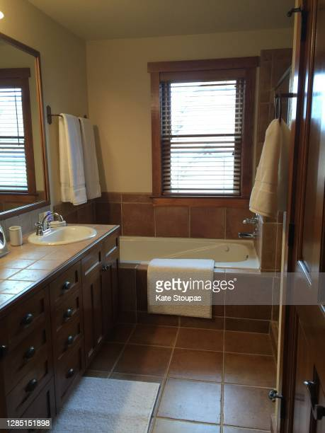 136 Log Cabin Bathroom Photos And Premium High Res Pictures Getty Images