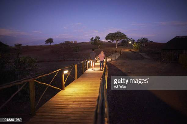 our path has been lit by these beautiful lights - night safari stock pictures, royalty-free photos & images